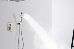 Materials and Products: Rainlex Brush Nickel Wall-Mounted Dual Functions Shower 10""