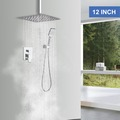 Materials and Products: Rainlex Chrome Plating Ceiling-Mounted Dual Functions Shower