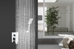 Materials and Products: Rainlex Chrome Plating Wall-Mounted Dual Functions Shower System